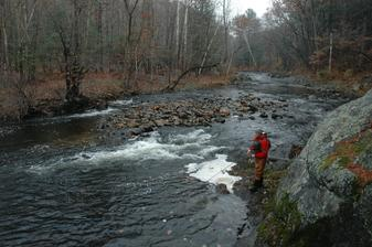 Fly fishing for Atlantic Salmon on the Naugatuck River in Connecticut